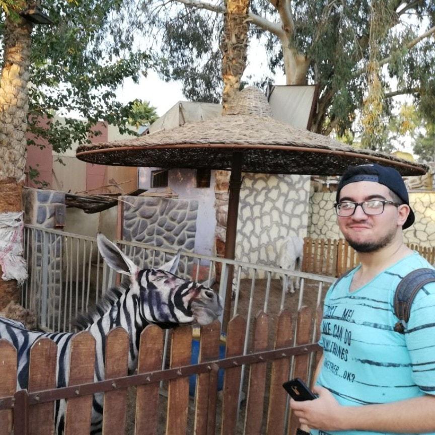 Зоопарк Каира обвинили в фальсификации зебры: фото