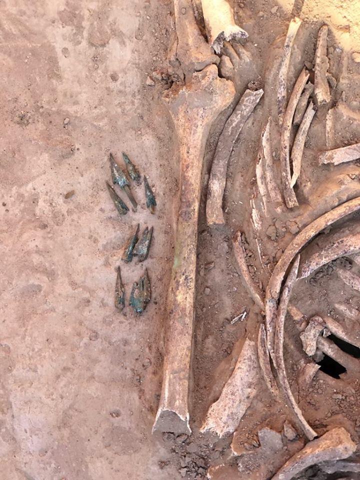 В Запорожье раскопали останки женщины-воина: фото
