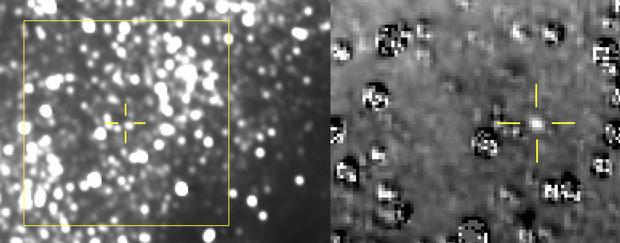 "NASA показало фото ""Ultima Thule"" на задворках Солнечной системы"