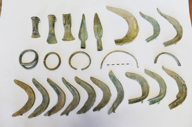 Пес-археолог: в Чехии животное выкопало клад бронзового века