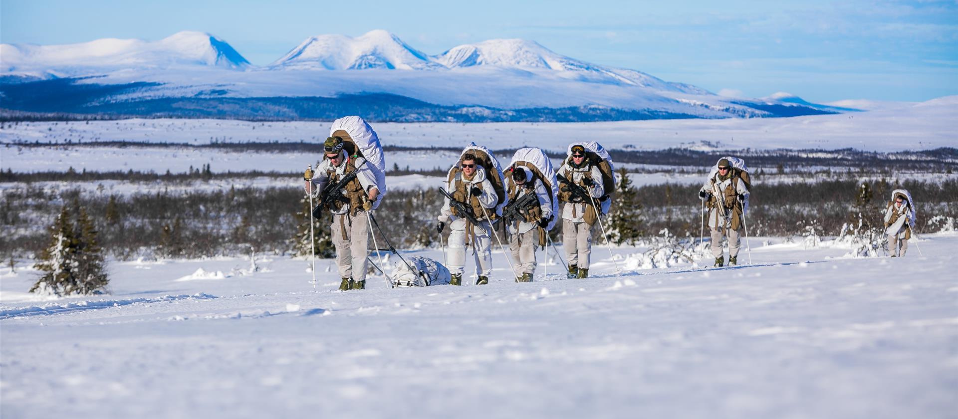 В Норвегии регулярно проводятся учения, призванные поделиться навыками и опытом ведения действий в суровых, зимних арктических условиях. Благодаря этим мероприятиям, наряду с менее масштабными учениями НАТО и миссией НАТО по патрулированию воздушного пространства в Исландии, Североатлантический союз приобретает навыки ведения операций в районе Северной Атлантики. © Norwegian Armed Forces