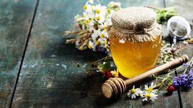 thumbnail h 20190708153836 6562 - Экспорт меда из Украины обновил рекорд - новости Украины, Продовольствие