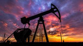 Страны ОПЕК+ договорились не увеличивать добычу нефти — новости У…