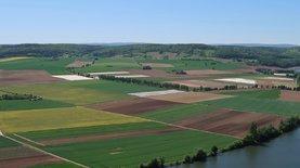 В Украине собрали теневой урожай на 88,5 млрд грн – Инфографика