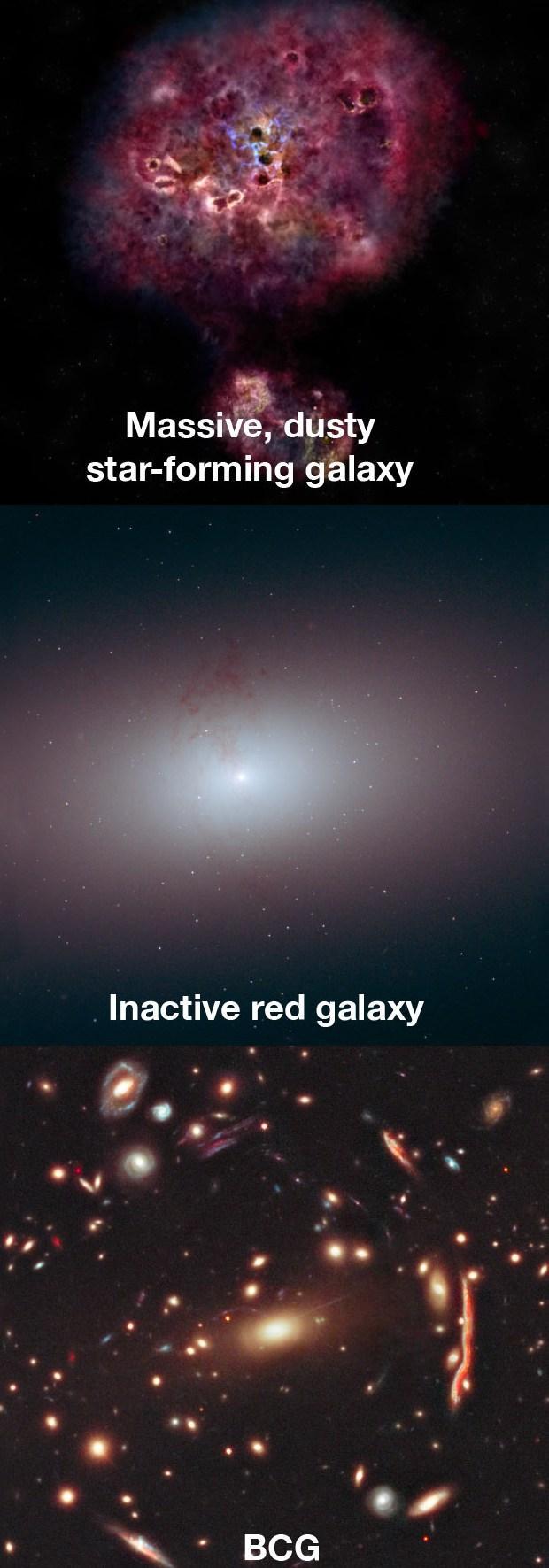 Знайдено ультрамасивну галактику: вона мертва, чому - не знають
