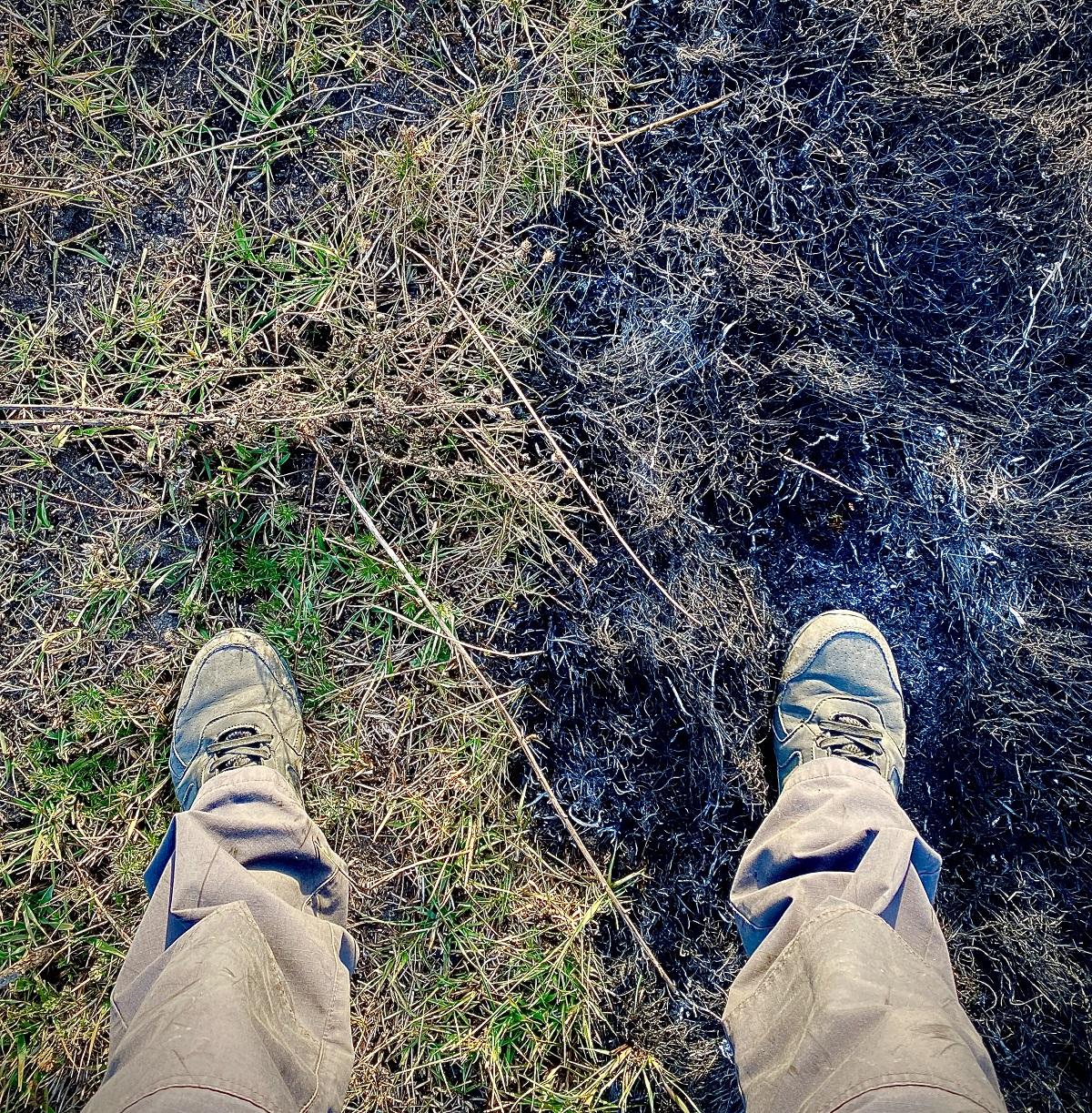 """""""Из пылающего леса можно и не вернуться"""". Как горела Зона отчуждения - глазами фотографа"""