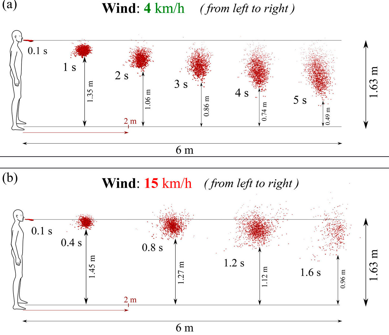 Кашлять на ветру – разносить коронавирус гораздо дальше: исследование