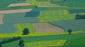 Что будет с земельной реформой и может ли КС ее отменить. Продовольствие,