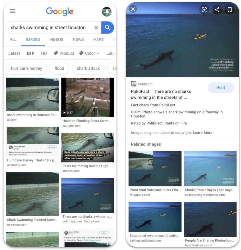 Как выглядит проверка изображений на достоверность от Google. Фото: googleapis.com