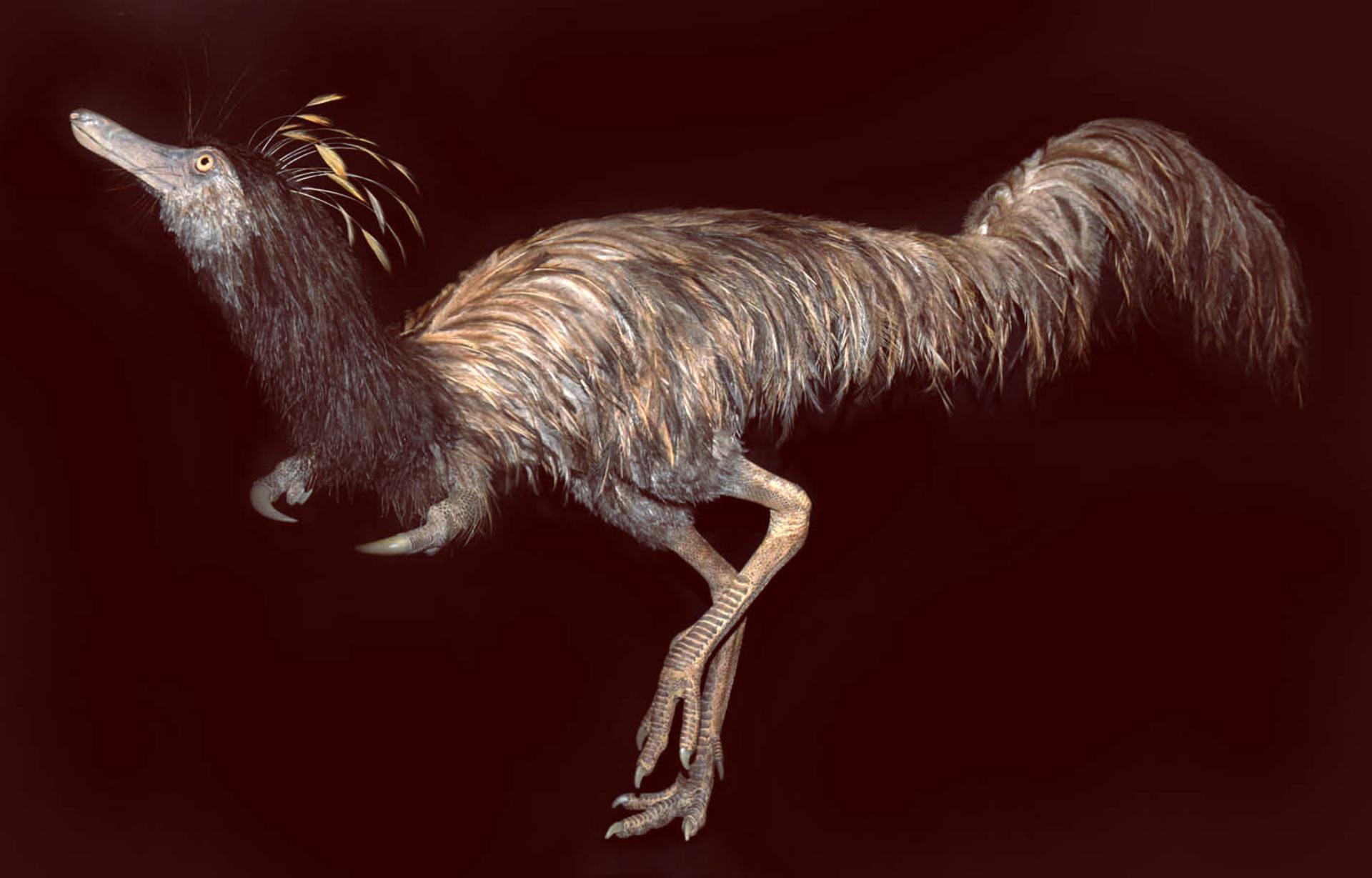 Визуализация насекомоядного динозавра Trierarchuncus prairiensis (Фото: Badlands Dinosaur Museum)