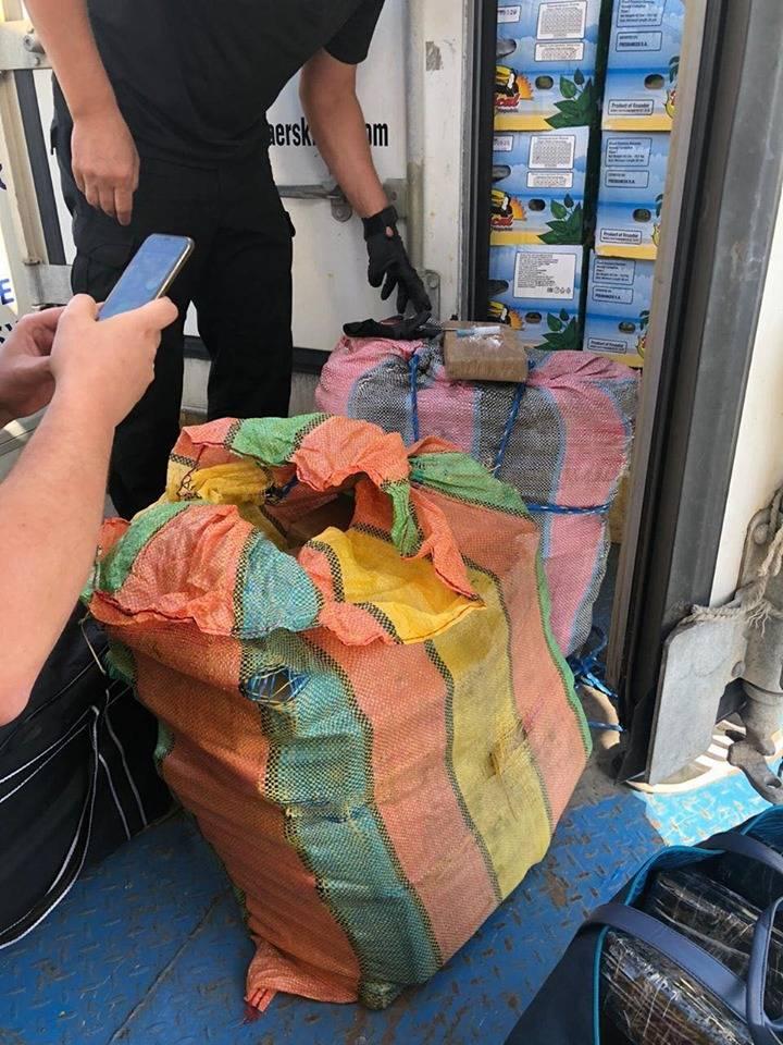 Более 100 кг кокаина. В порту под Одессой нашли наркотики, спрятанные в бананах - видео
