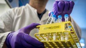 Как Синево, Dila и другие лаборатории пытаются участвовать в ПЦР-госпрограмме Степанова. FMCG,