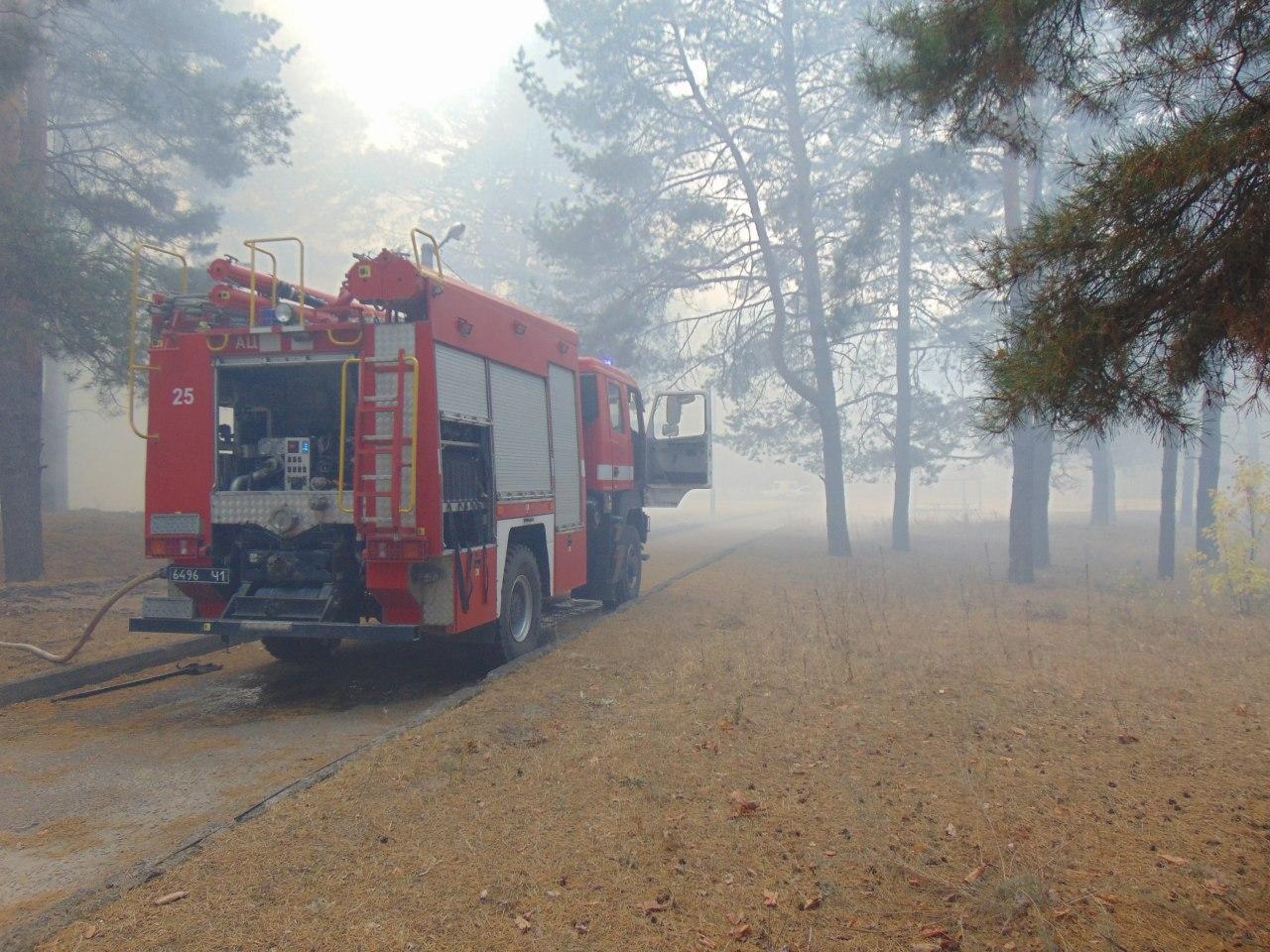 Пожары в Луганской области (Фото: пресс-служба полиции)