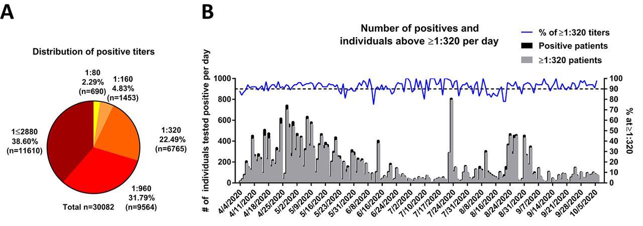 Как долго сохраняются антитела к коронавирусу. Исследование из США обнадеживает