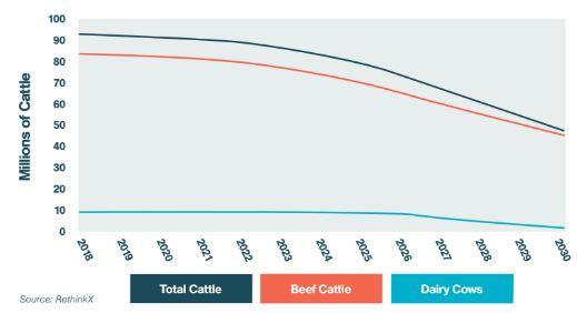Мир перейдет на искусственное мясо. Это вопрос нескольких лет. Главное из отчета RethinkX