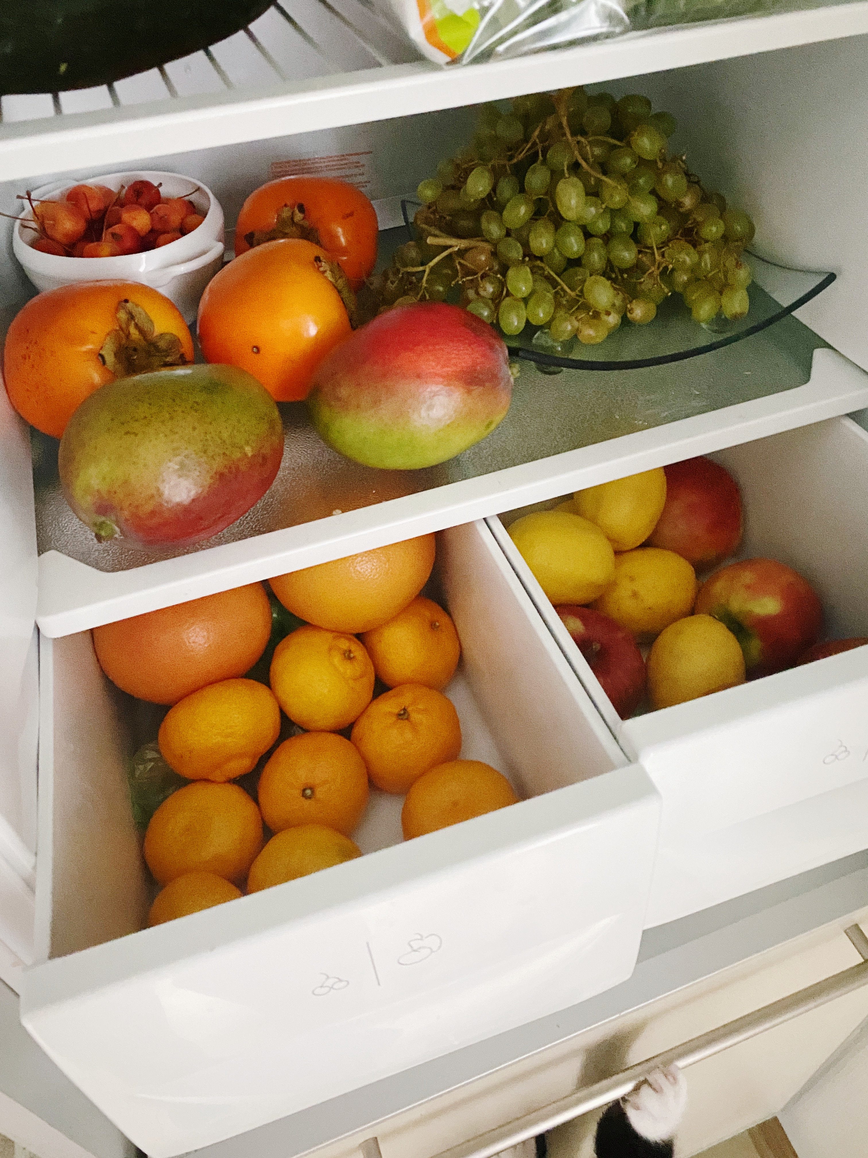Що в холодильнику Марії Карачиної