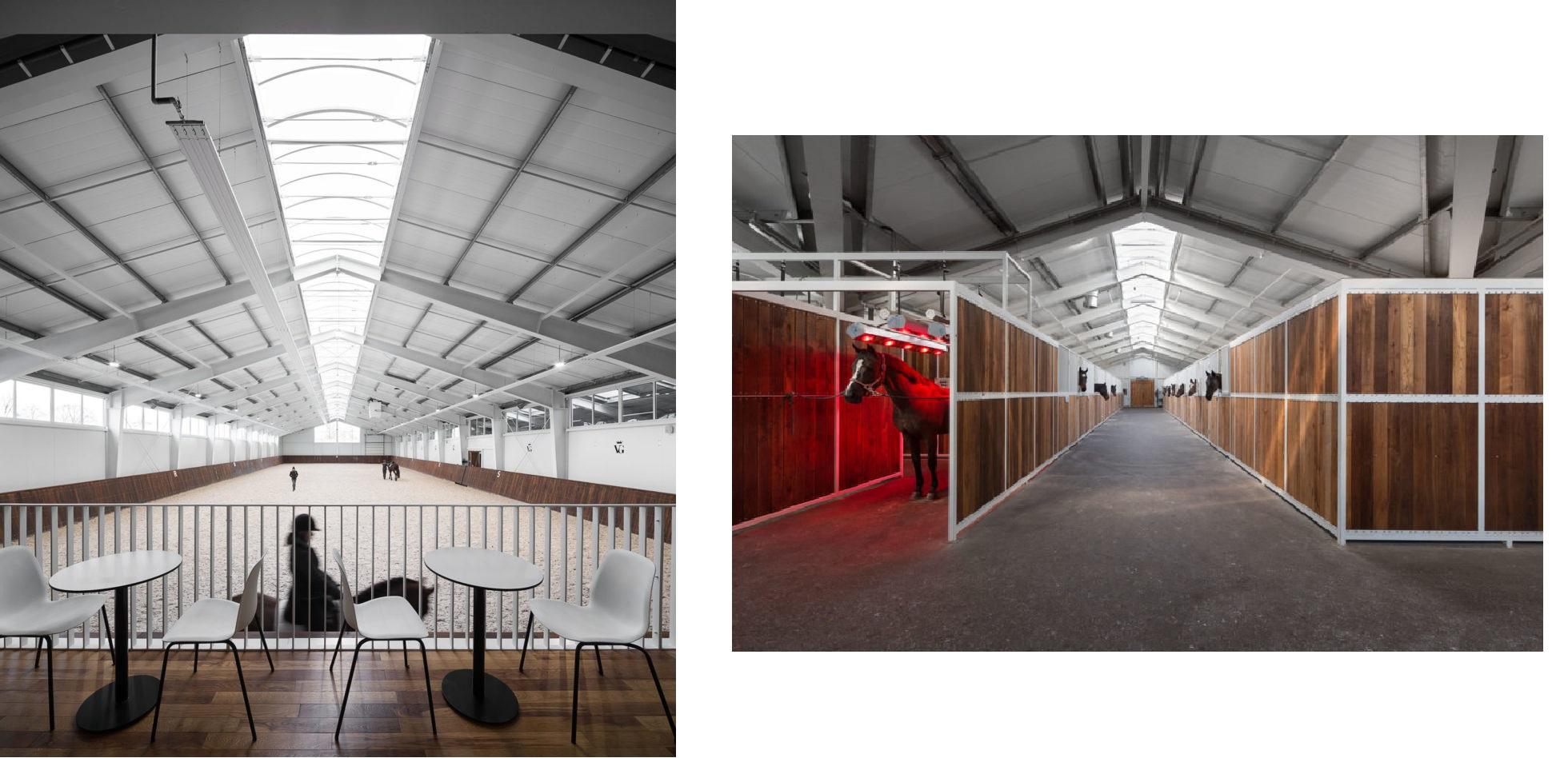 Конно-спортивный клуб, VG Horse Club, коллаж LIGA.net, фото: Drozdov & Partners
