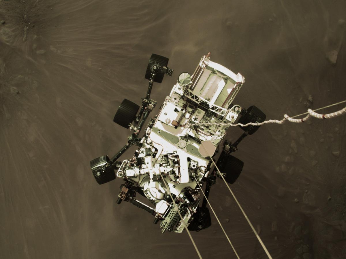 Ровер Perseverance (Фото: NASA)