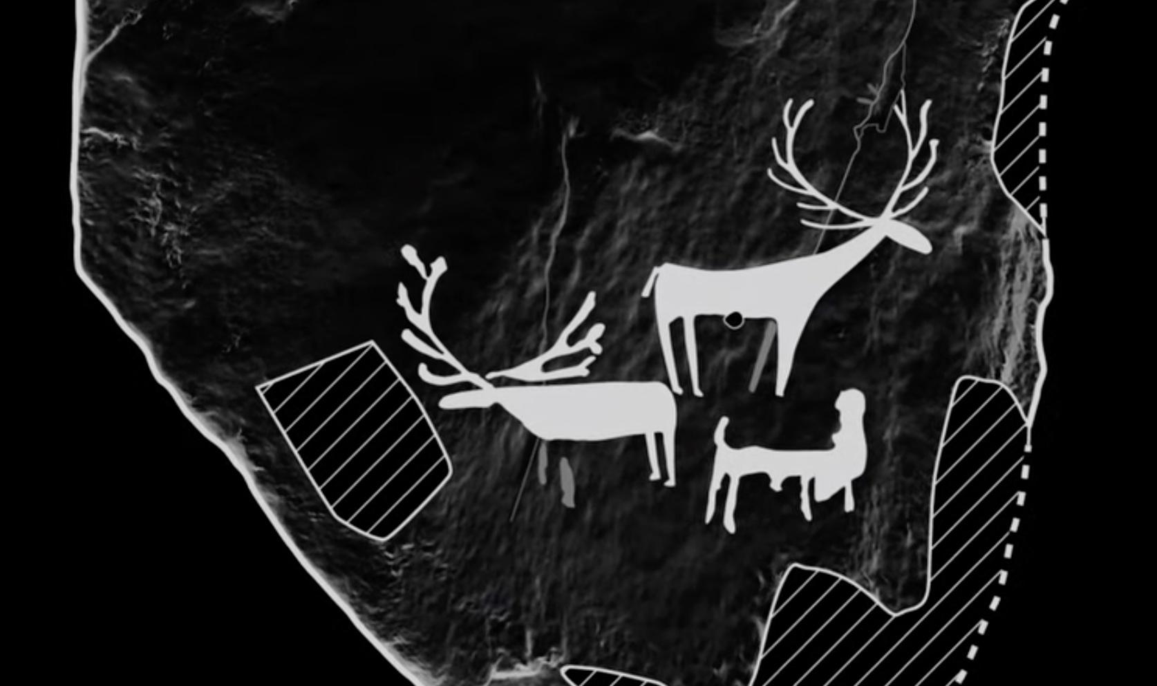 В Шотландии впервые обнаружили изображения доисторических животных: видео
