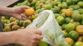Запрет на использование пластиковых пакетов в торговых сетях всту…