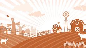 Рынок земли: как арендатору выкупить землю с 1 июля. ,