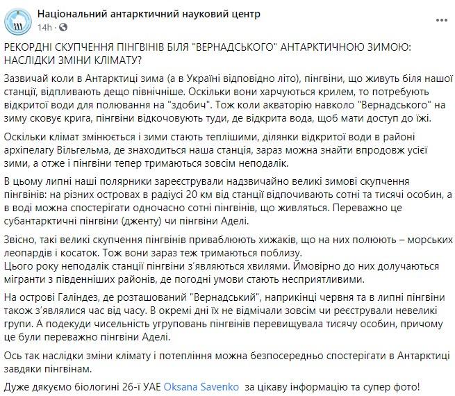 Антарктида. Біля української станції рекордне для зими скупчення пінгвінів – фото