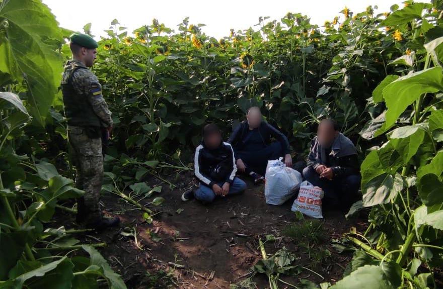 """Прятались в подсолнухах. Пограничники задержали """"вора в законе"""" на границе с Россией: фото"""