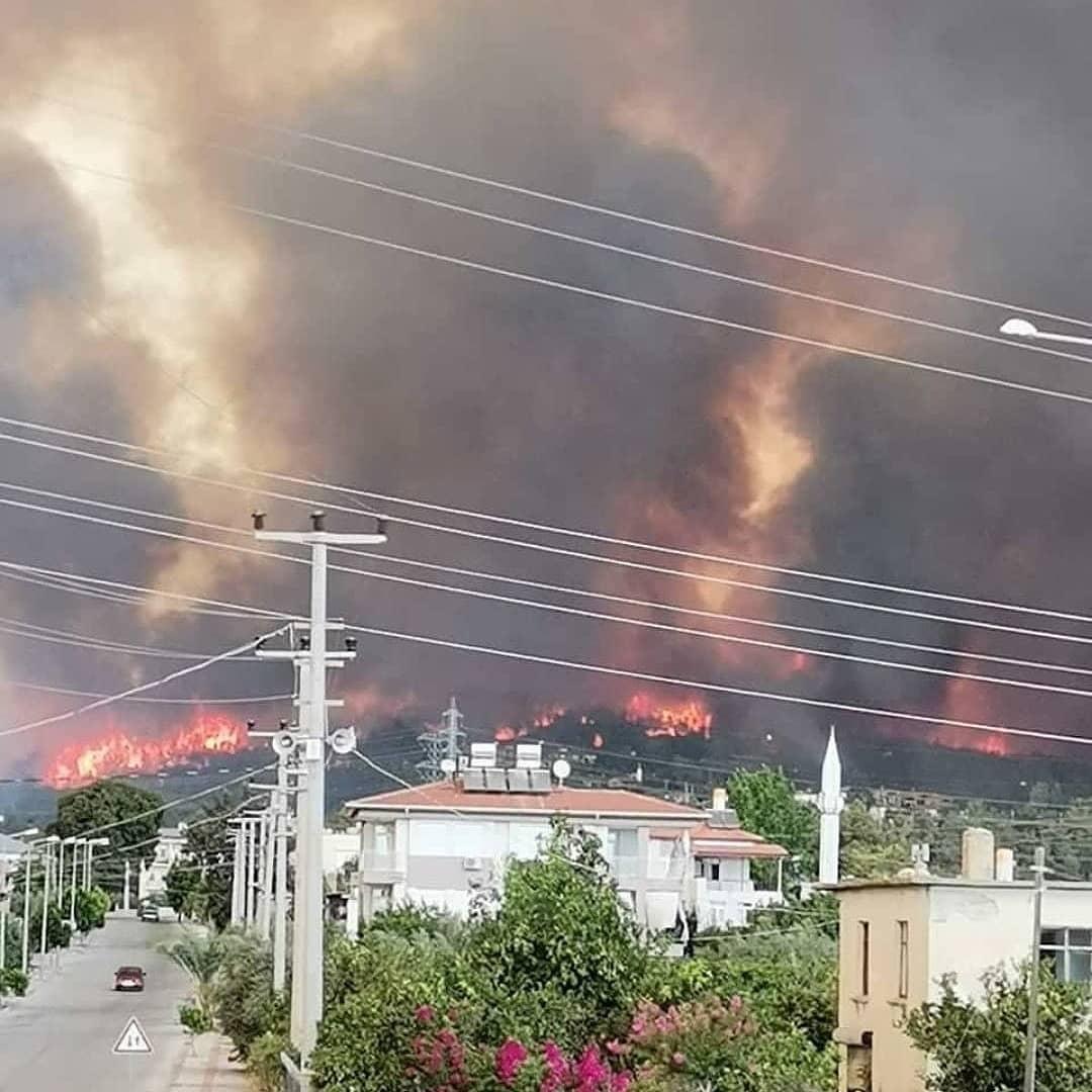 В Турции масштабные лесные пожары добрались до курортной Анталии – фото, видео