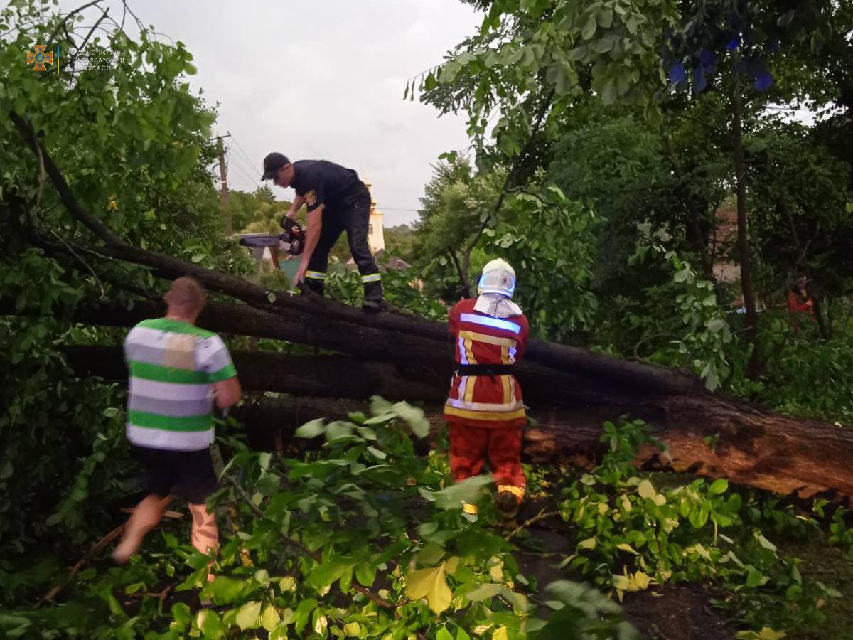 После урагана. На границе с Венгрией временно закрыли пункт пропуска