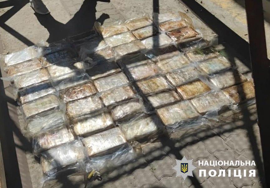 """В одесском порту нашли """"товар"""" итальянской мафии. В бананах был кокаин на $10 млн – видео"""