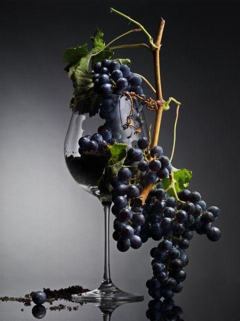 Авторская коллекция или как рождаются уникальные украинские вина