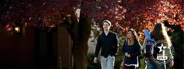 Успешный путь к обучению в американских университетах.jpg