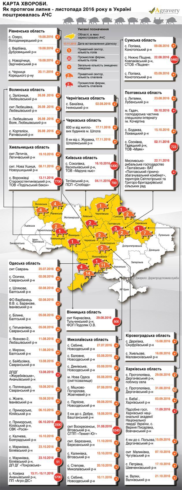 Как распространяется АЧС по Украине: инфографика