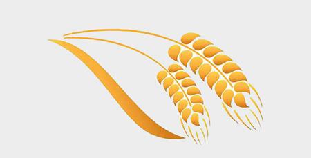 Сельское хозяйство.jpg