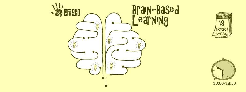 мозг и обучение.jpg