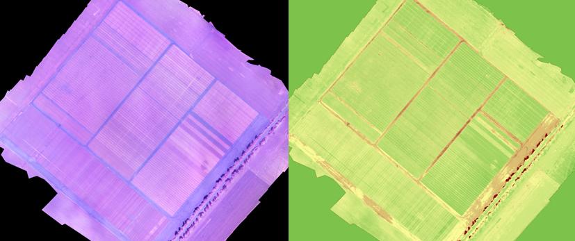 Данные аэрофотосьемки полей в разных диапазонах