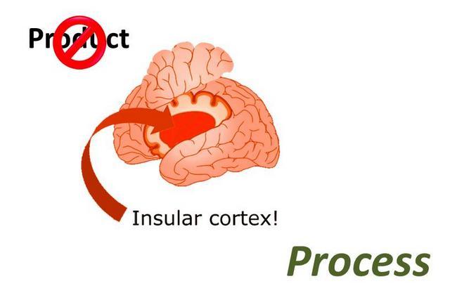 Proc_4_brain.JPG