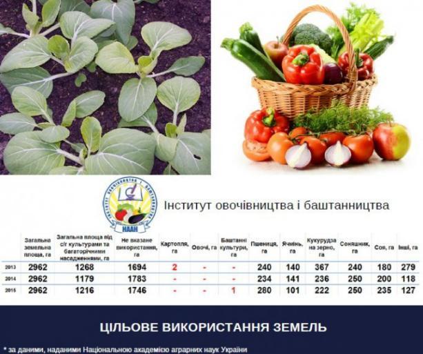 Что происходит в Нацакадемии аграрных наук: инфографика