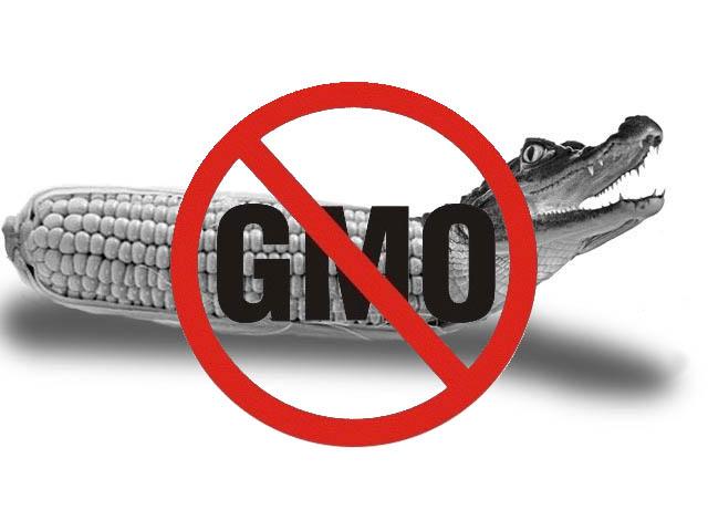 100 тысяч гривен для анализа на «С ГМО» и «БЕЗ ГМО»