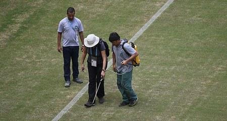 ЧМ-2014: итоги первой недели мундиаля в Бразилии