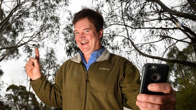 В Австралии водопроводчик спас коалу от наводнения: видео