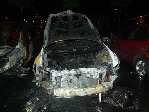 В Голосеевском районе Киева ночью сгорело два авто: фото