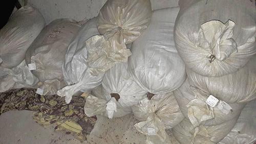Под Ровно полиция изъяла 600 кг янтаря на 6 млн гривень: фото