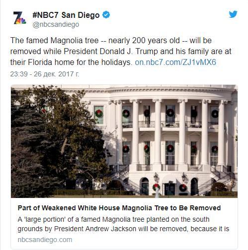 Жена Трампа распорядилась спилить 200-летнее дерево у Белого дома