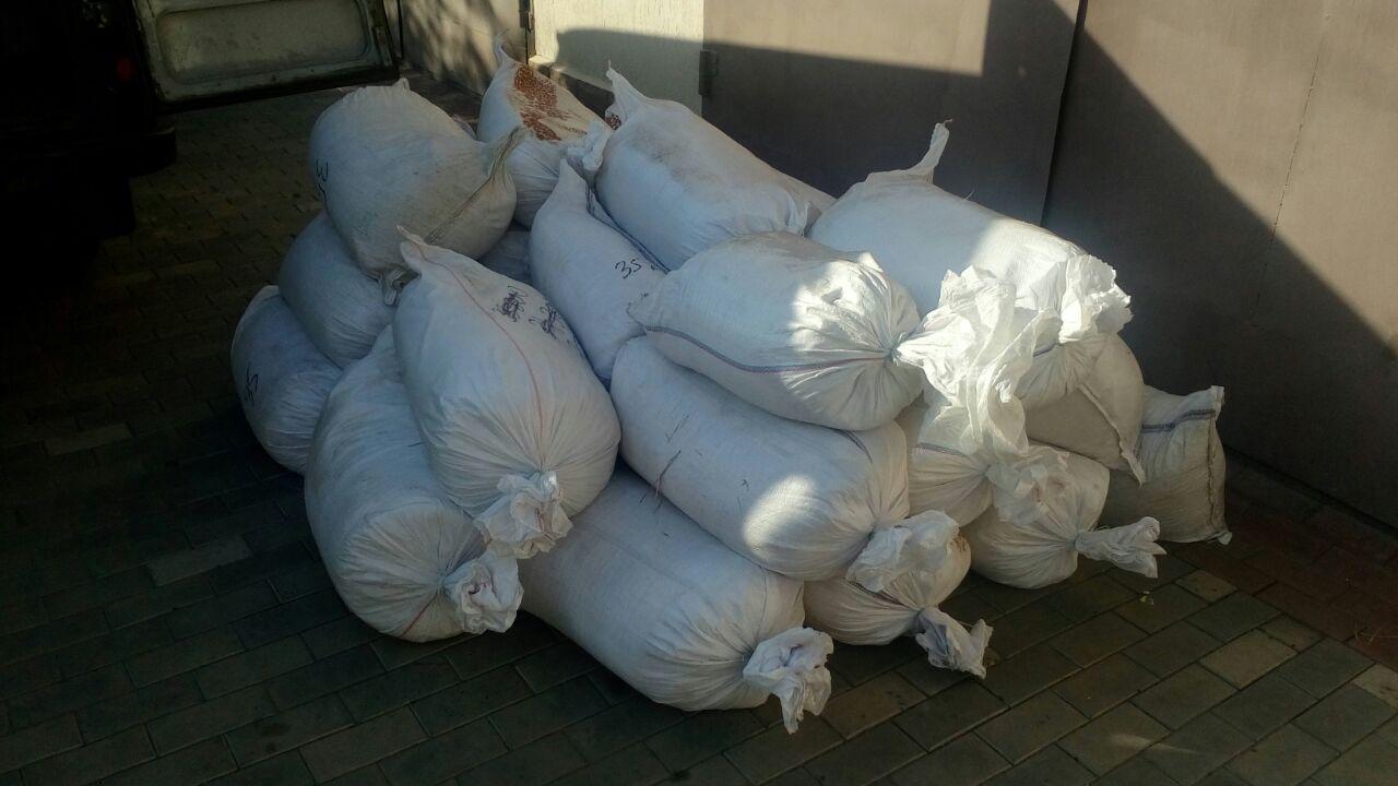 Прикордонники запобігли вивезенню в Росію 4 т меду на 500 тис грн
