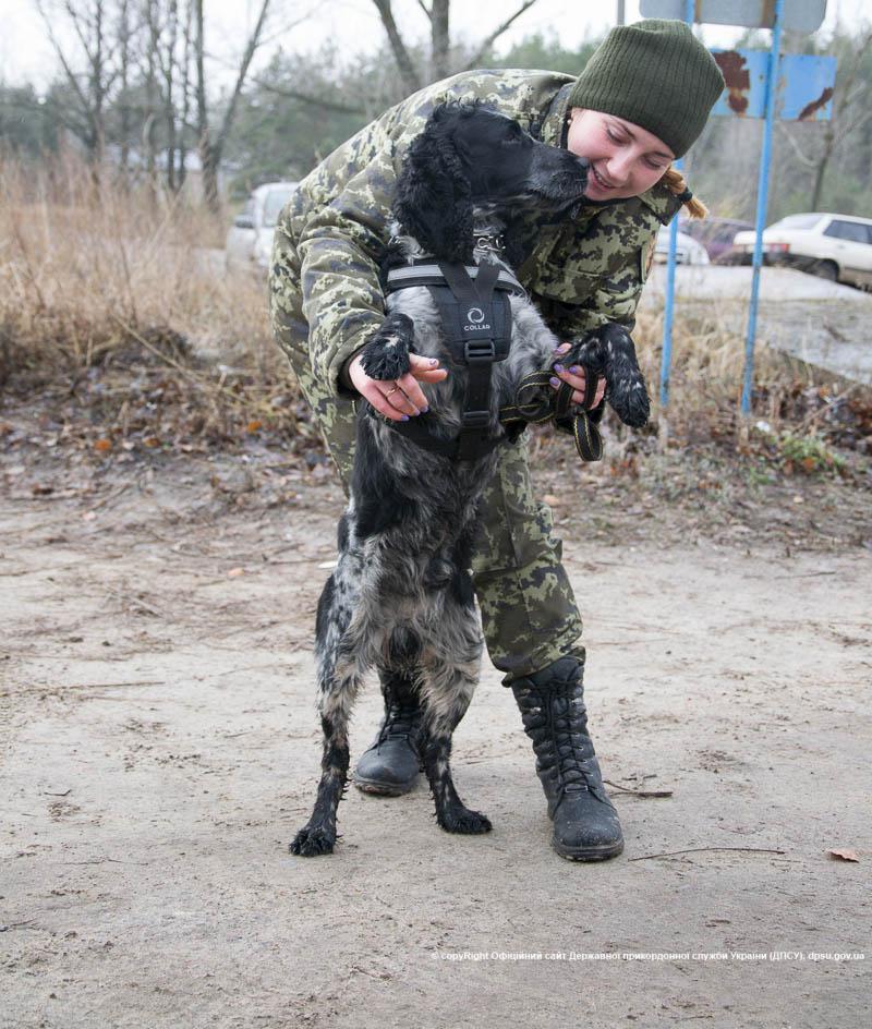 На Луганщине волонтеры одели служебных собак в бронежилеты: фото
