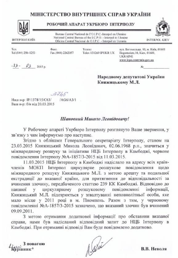 В Интерполе пояснили, за что разыскивают Княжицкого: документ
