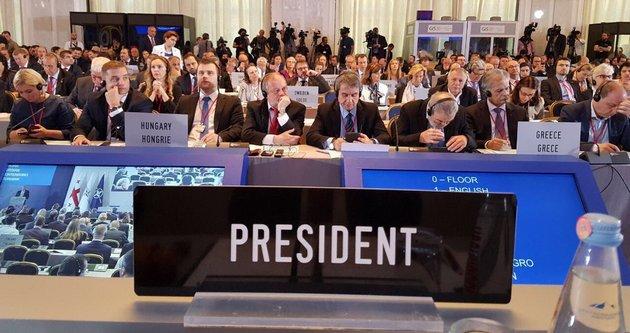 Путин понимает только язык силы - глава ПА НАТО