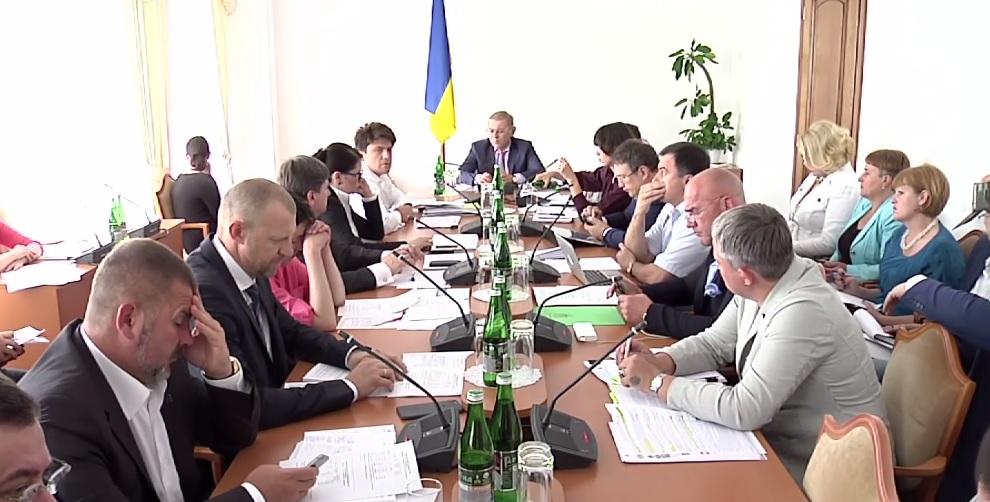 """""""Мы боремся с вашей дуростью"""": как Савченко выгоняли из комитета"""