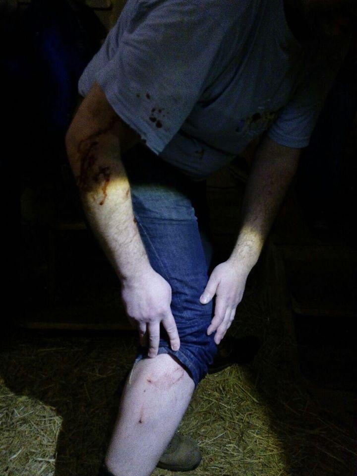 В Запорожье на посетителя бани напал лев: фото